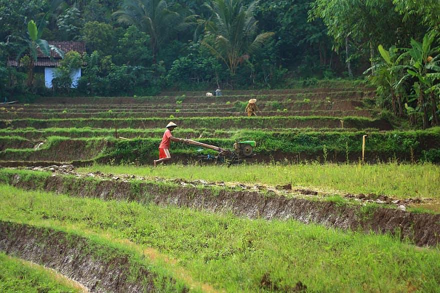 How Much Do Farmers Make Annually Miraclefarmer Com